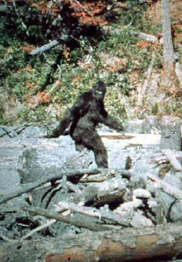 bigfoot from patterson film